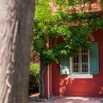 tenuta la valle - villa gambino - dettagli giardino esterno